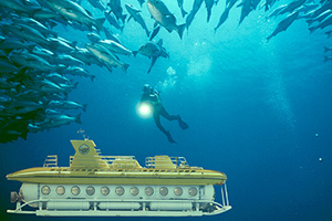 Submarine Safaris excursion